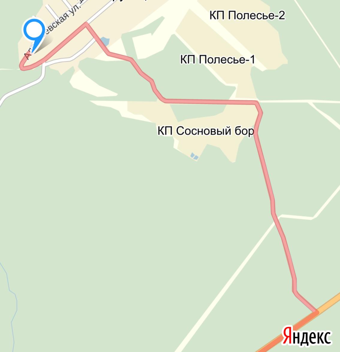 Карта через лес